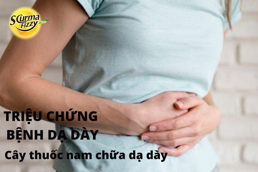 cay-thuoc-nam-chua-da-day-3