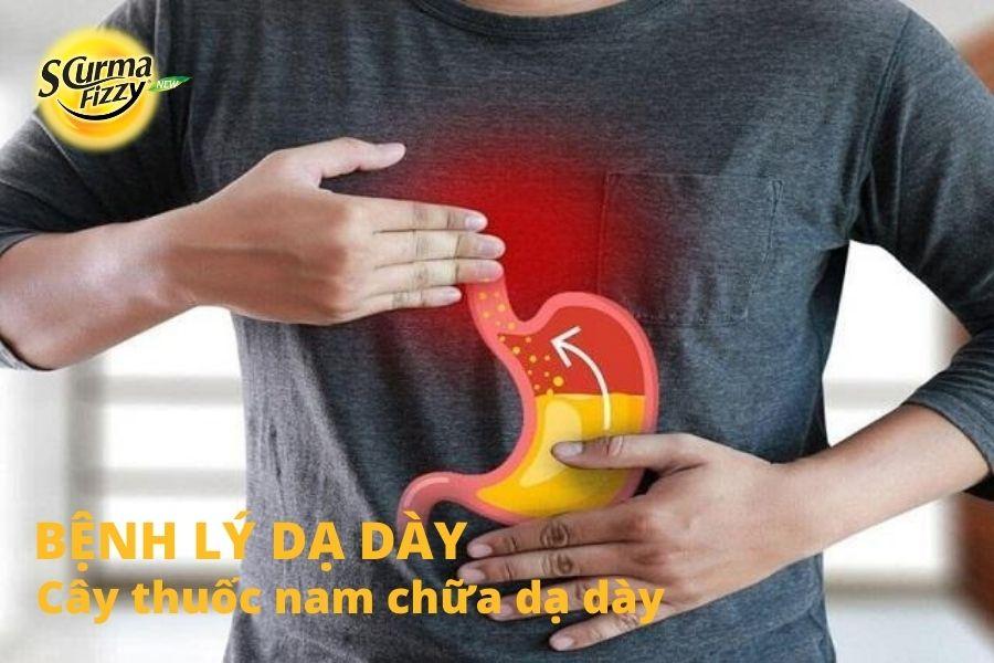 cay-thuoc-nam-chua-da-day-2