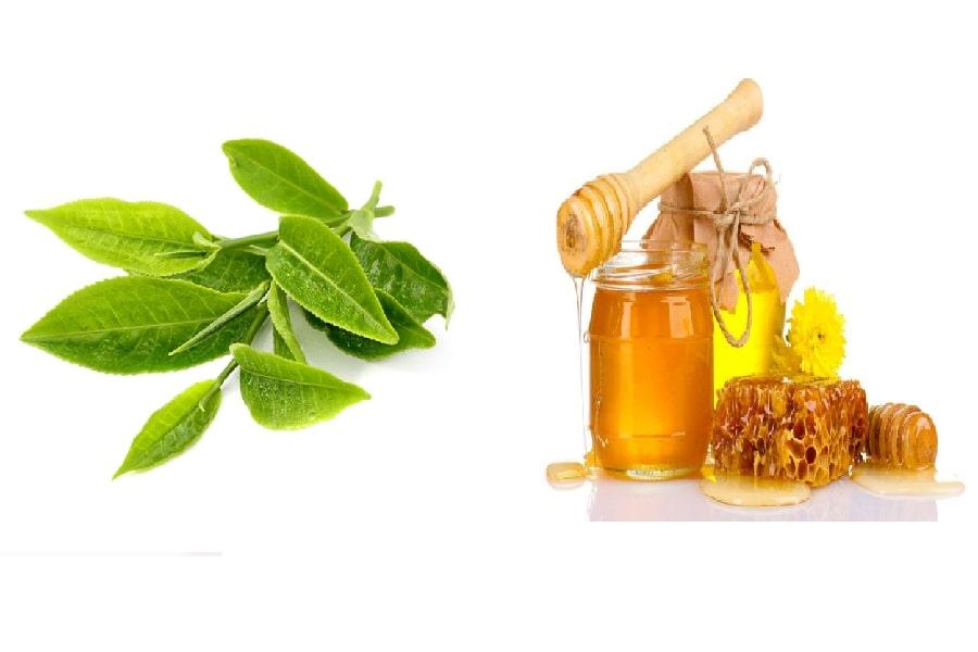 chữa đau dạ dày bằng mật ong cùng lá chè xanh