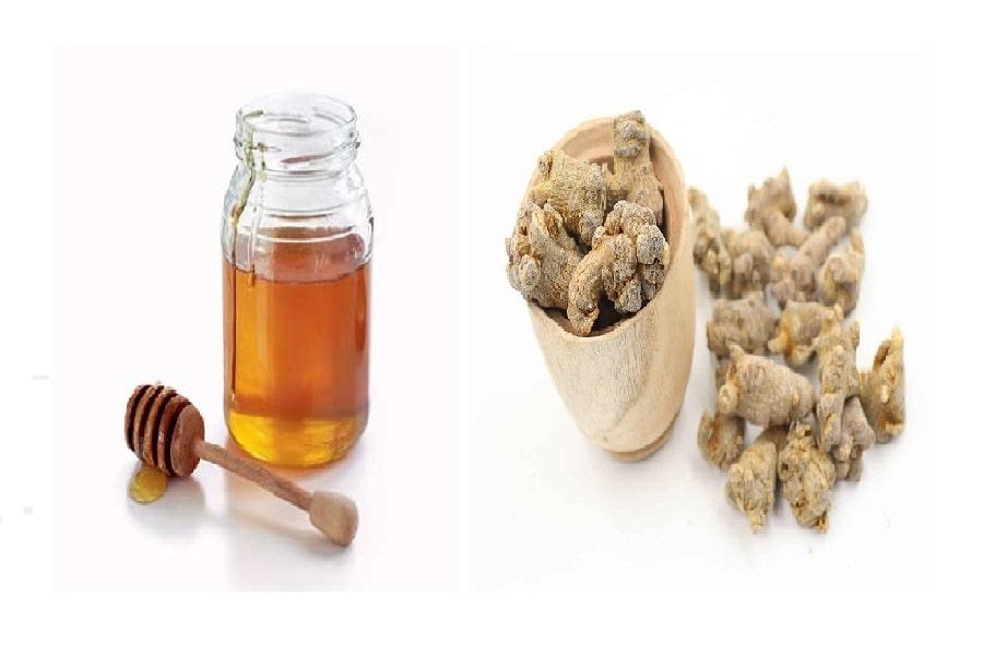 chữa đau dạ dày bằng mật ong cùng tam thất