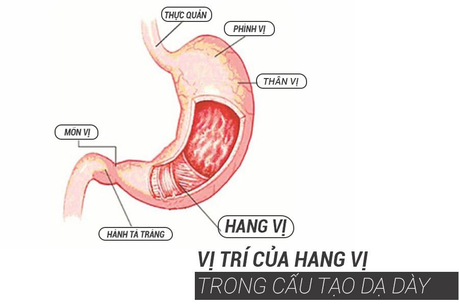 hang-vi-da-day-1