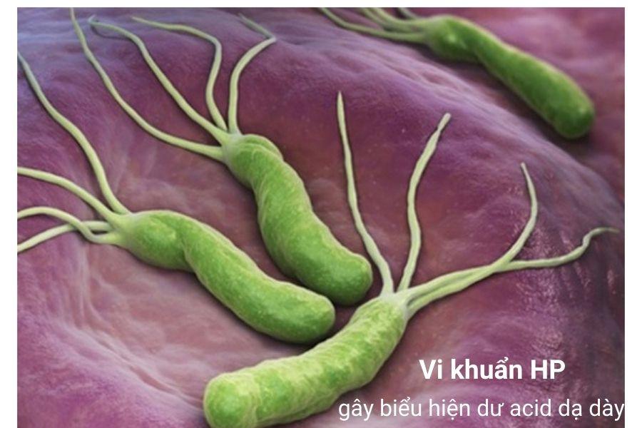 Vi khuẩn HP gây hại cho dạ dày