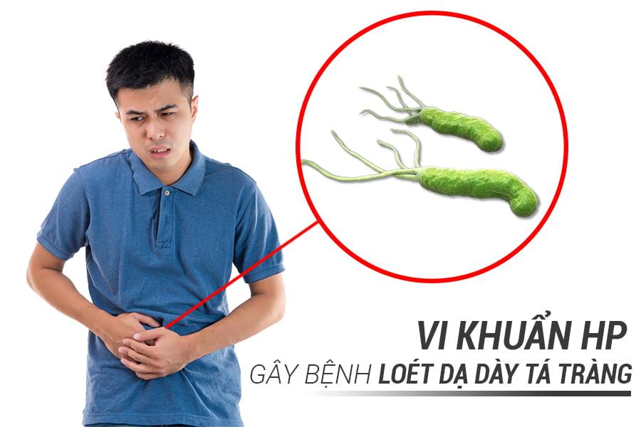 vi_khuan_hp1
