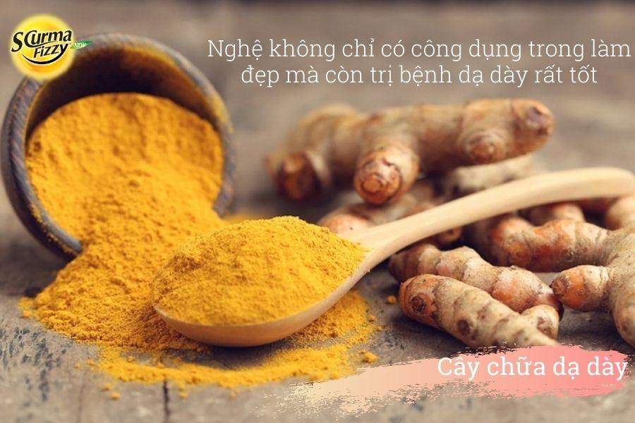 cay-chua-da-day-3