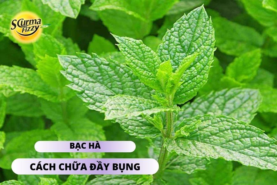 cach-chua-day-bung-4