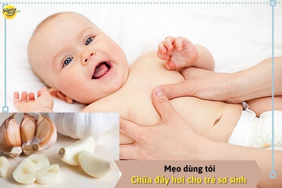 meo-chua-day-hoi-tu-toi