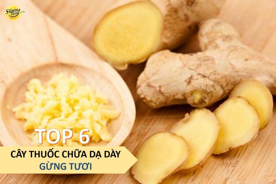 cay-thuoc-chua-da-day-5