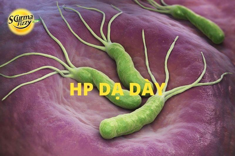 hp-da-day
