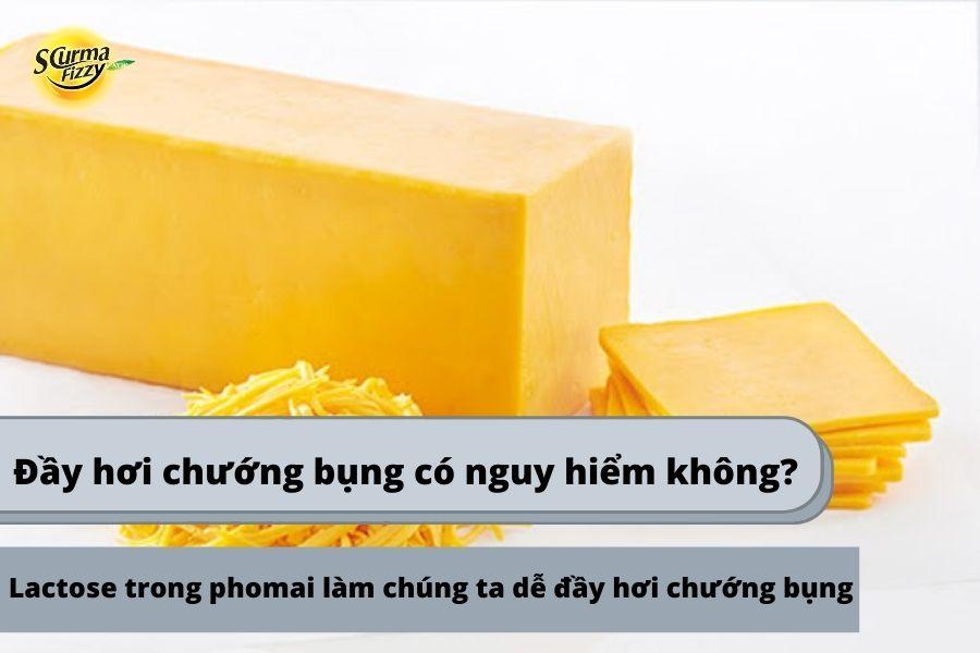Lactose trong phomai gây đầy hơi chướng bụng