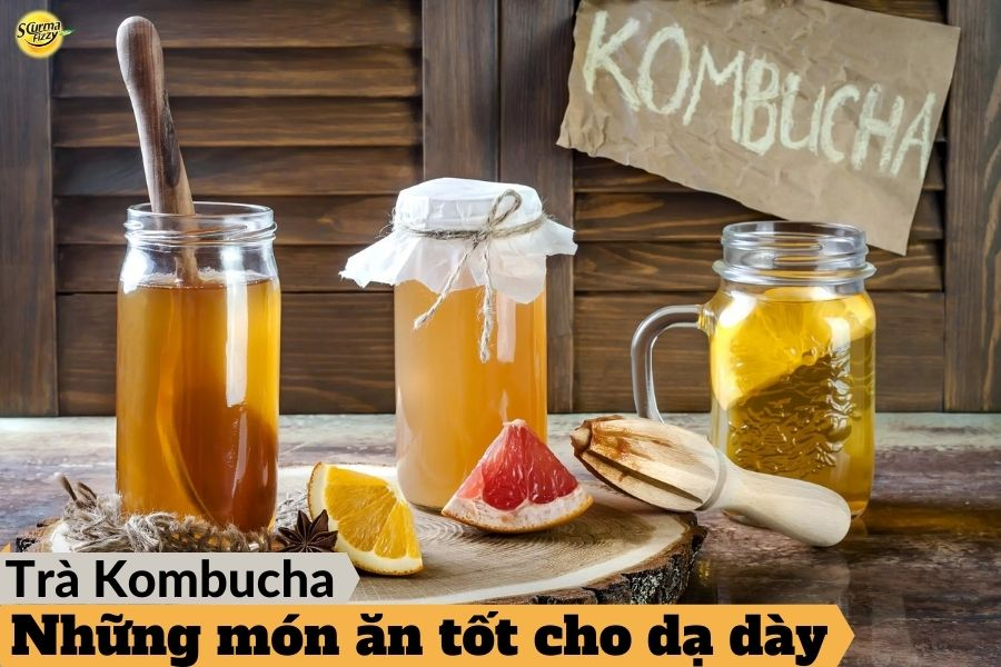 trà kombucha chứa nhiều probiotic
