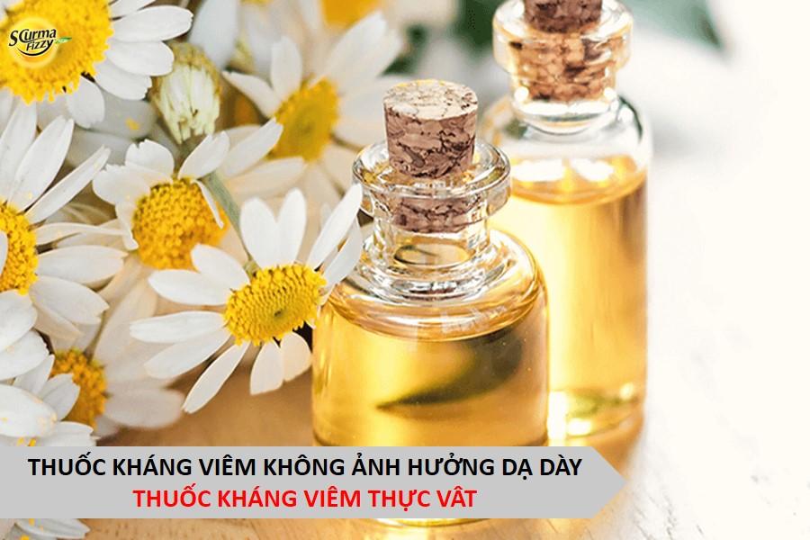 thuoc-khang-viem-thuc-vat