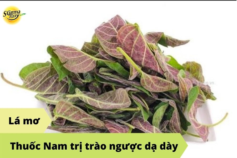thuoc-nam-tri-trao-nguoc-da-day-3
