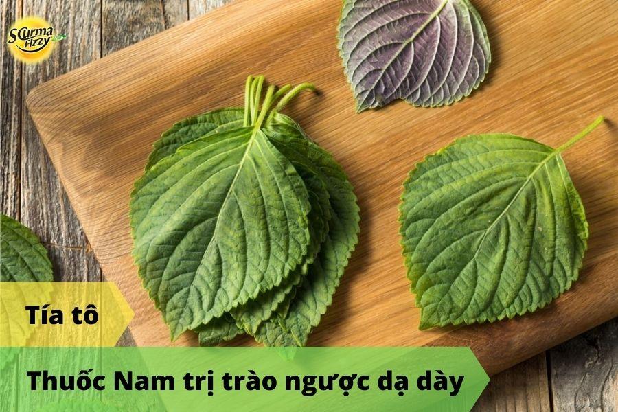 thuoc-nam-tri-trao-nguoc-da-day-5