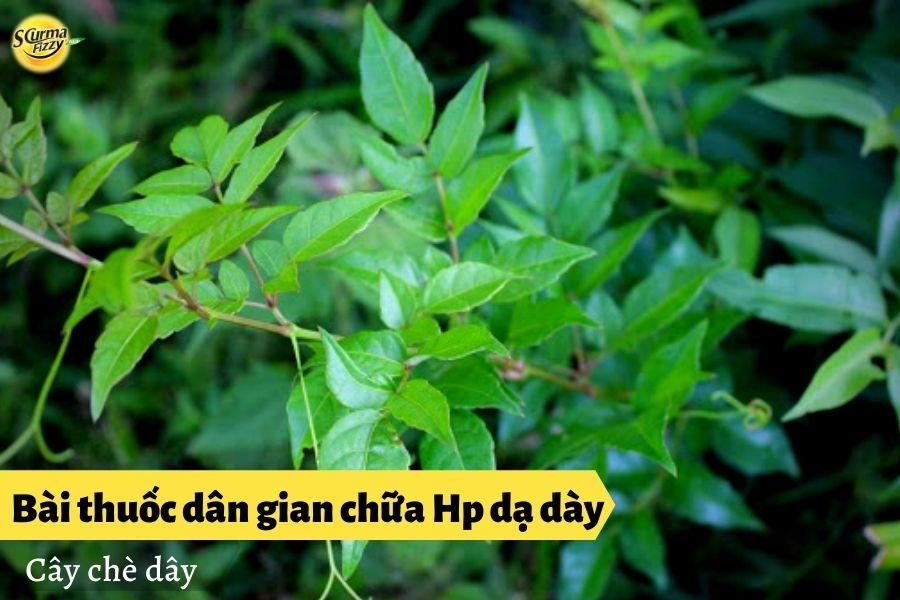 bai-thuoc-dan-gian-chua-hp-da-day3