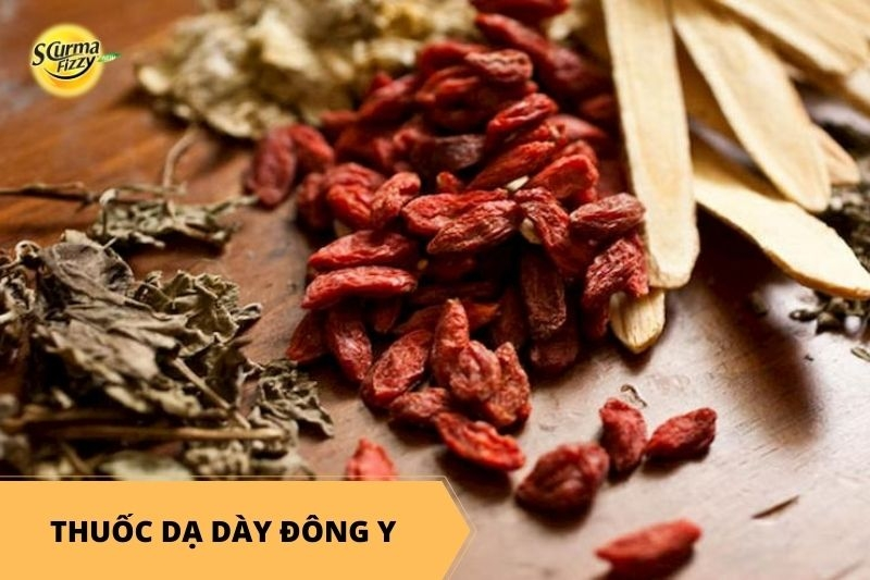 thuoc-da-day-dong-y